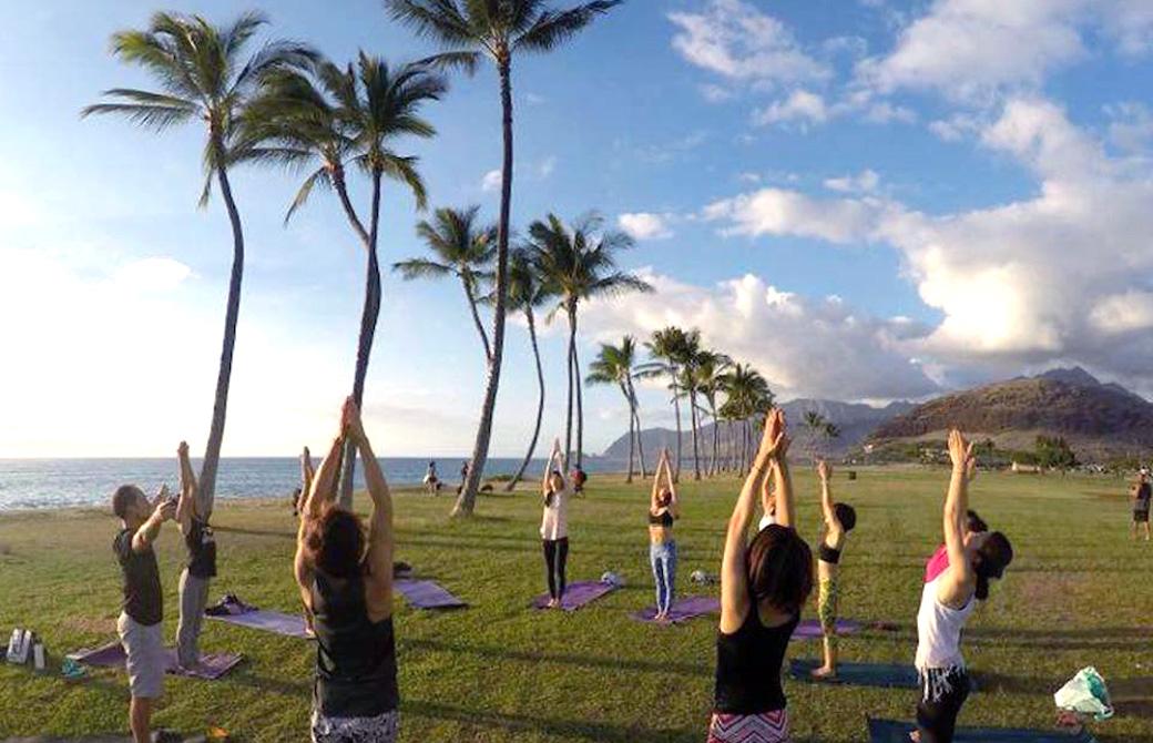 ハワイヨガ留学企画サンガワイで海の見えるヤシの木の下でヨガをしている様子