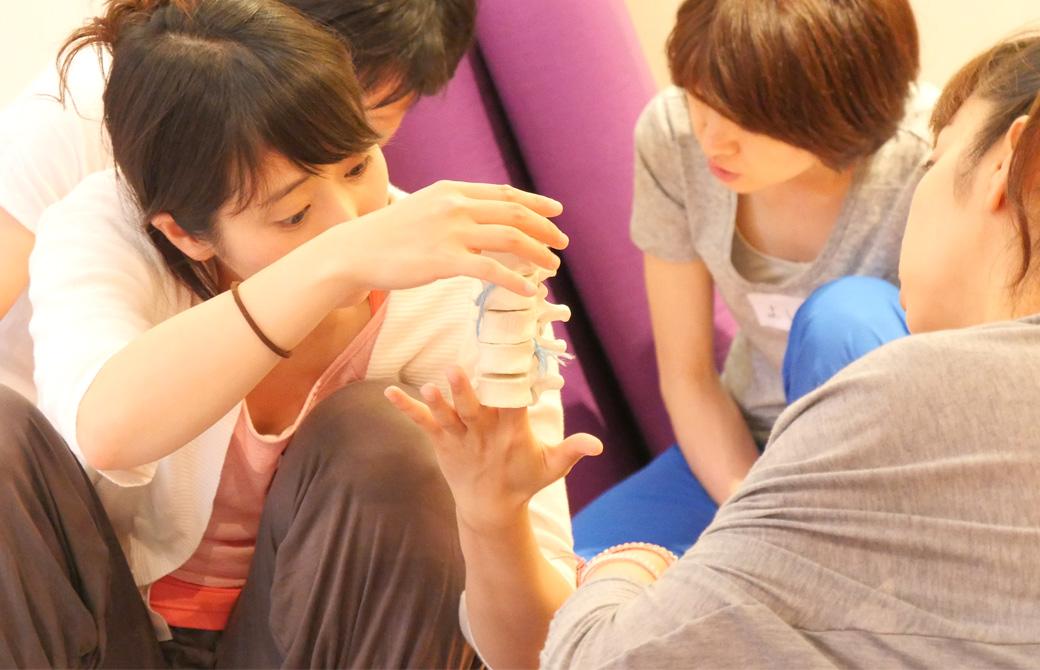 ヨガ解剖学ティーチャーズトレーニング講座風景。生徒が脊柱の骨模型を興味深く見ている様子