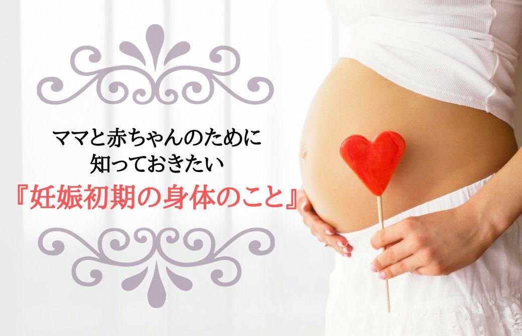 ママと赤ちゃんのために知っておきたい妊娠初期の身体のこと